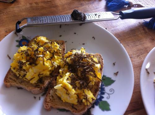 Crostini con uova al tartufo